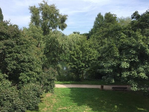 Appartement à louer 1 32.19m2 à Strasbourg vignette-5