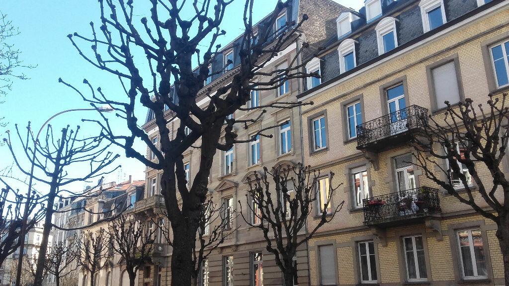 Appartement à louer 6 157.3m2 à Strasbourg vignette-3