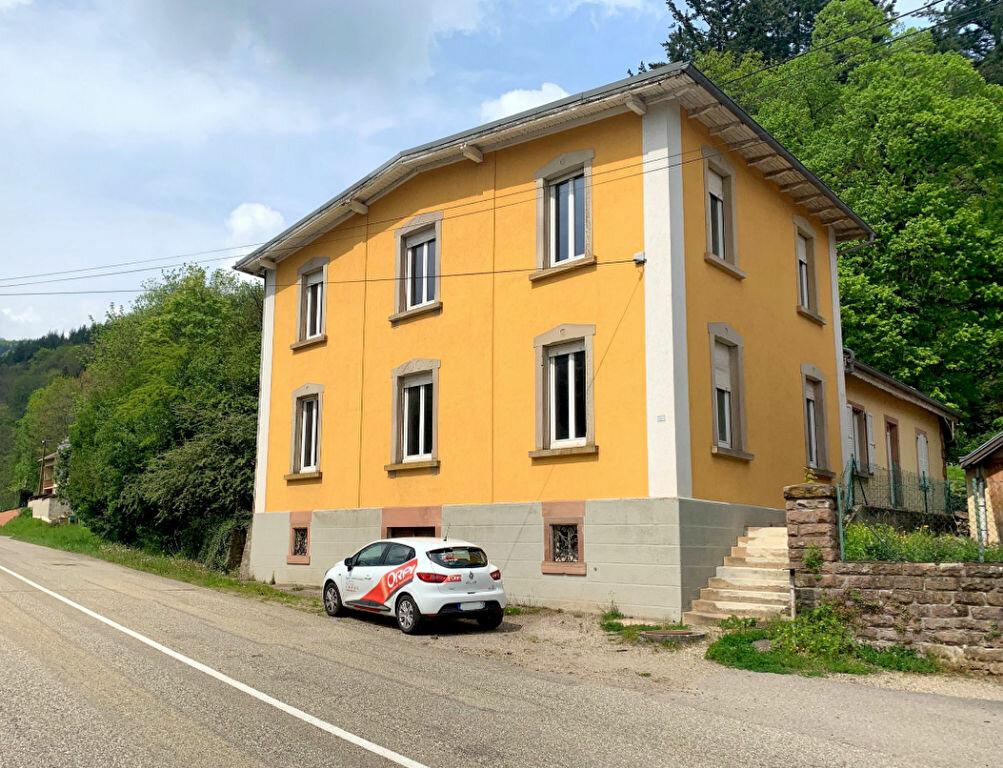 Immeuble à vendre 0 225m2 à Schirmeck vignette-1