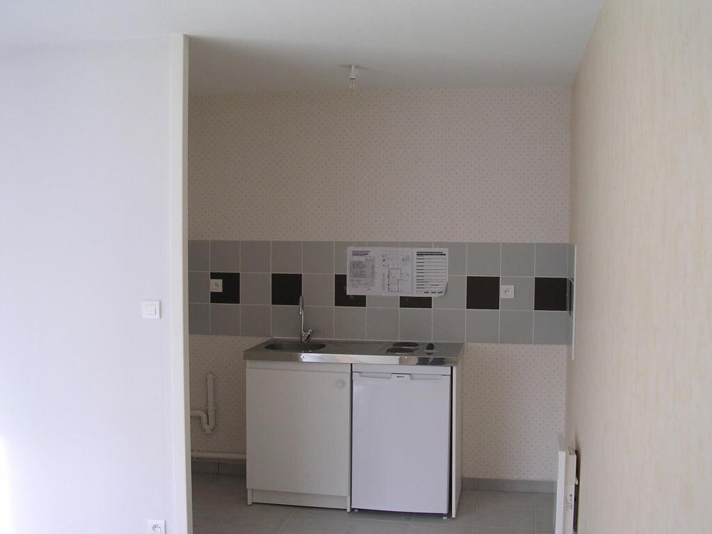 Appartement à louer 3 53m2 à Pleumeur-Bodou vignette-4