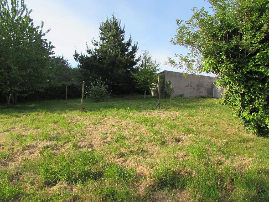 Maison à vendre 8 185m2 à Plougasnou vignette-3