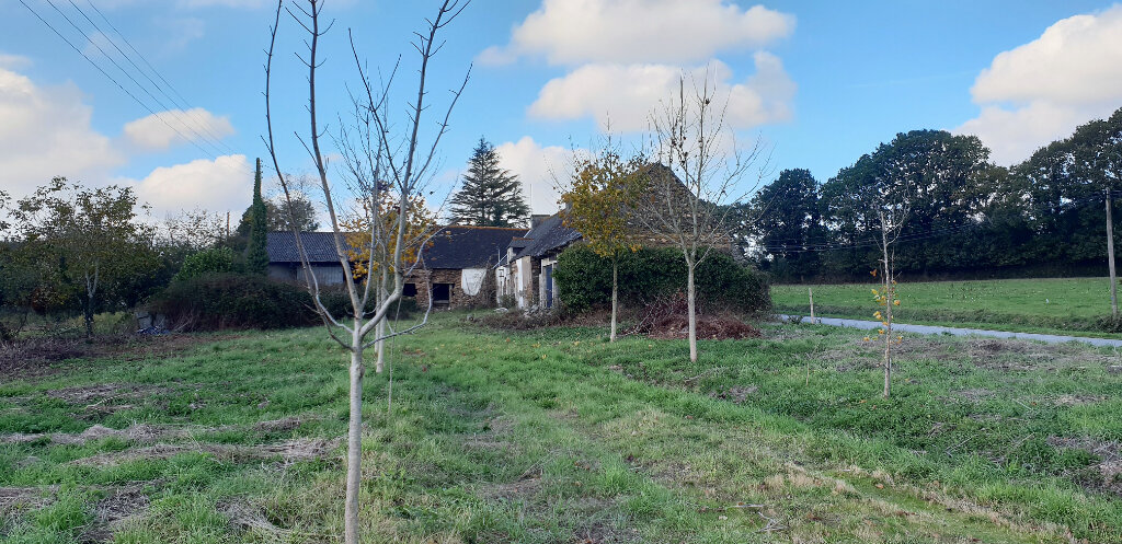 Maison à vendre 3 300m2 à Saint-Connec vignette-4