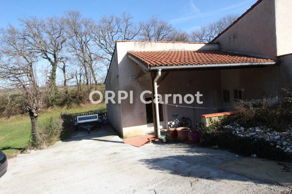 Maison à louer 3 100m2 à Lagarrigue vignette-7