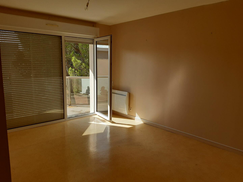 Appartement à louer 4 55m2 à Castres vignette-3