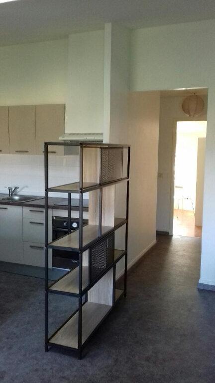 Appartement à louer 3 58m2 à Mazamet vignette-5
