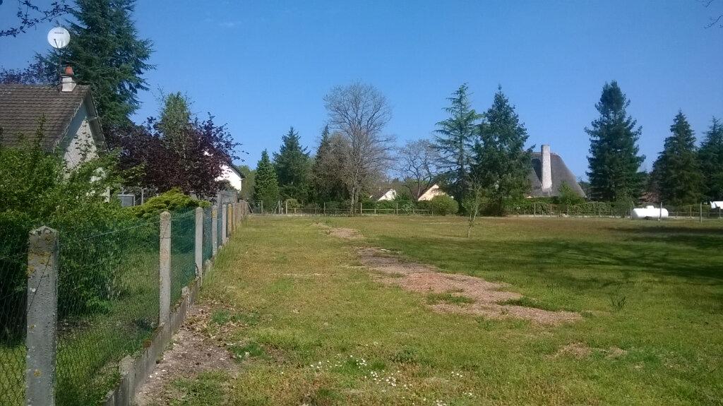 Terrain à vendre 0 2079m2 à La Ferté-Saint-Cyr vignette-2