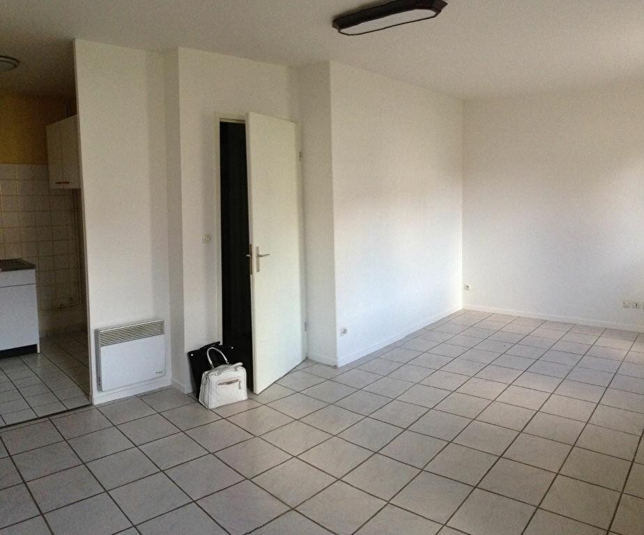 Appartement à louer 1 30.32m2 à Le Plessis-Belleville vignette-2