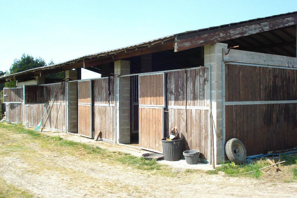 Maison à vendre 5 165m2 à Gonneville-sur-Mer vignette-8