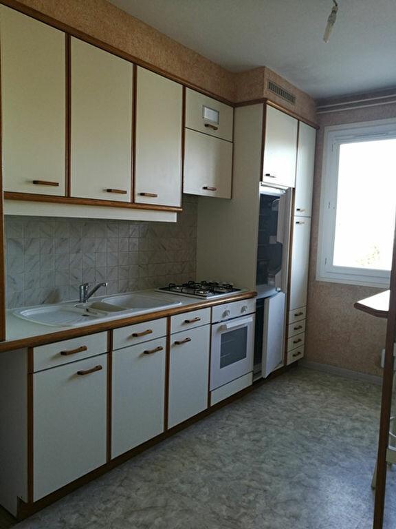 Appartement à louer 2 65.01m2 à Saint-Avertin vignette-4