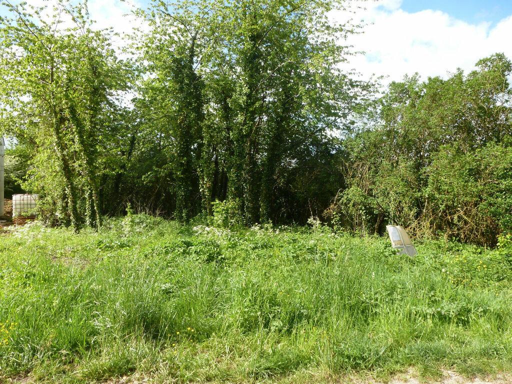 Terrain à vendre 0 1123m2 à Boissy-le-Châtel vignette-1
