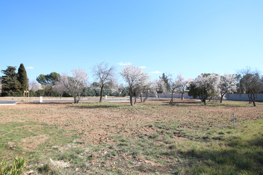 Terrain à vendre 0 640m2 à Carpentras vignette-1