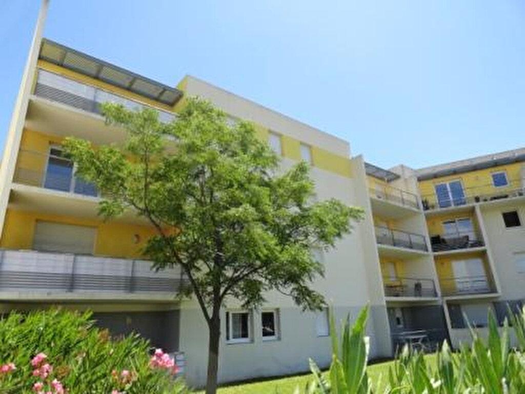 Appartement à vendre 2 43m2 à Avignon vignette-1