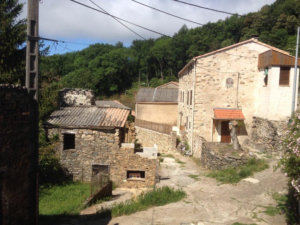 Maison à vendre 4 50m2 à Ferrals-les-Montagnes vignette-10