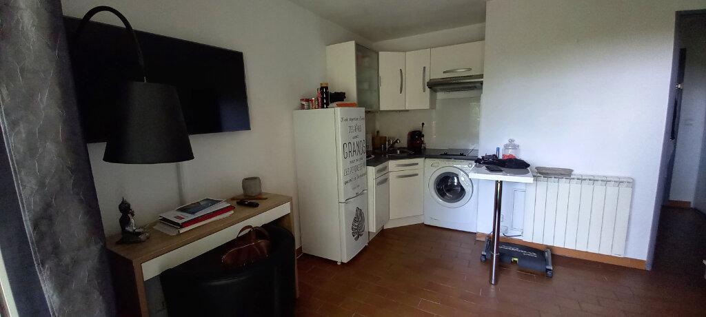 Appartement à louer 2 29.75m2 à Cagnes-sur-Mer vignette-3