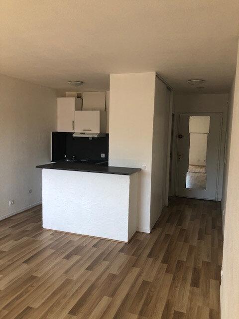 Appartement à louer 1 25.43m2 à Cagnes-sur-Mer vignette-3