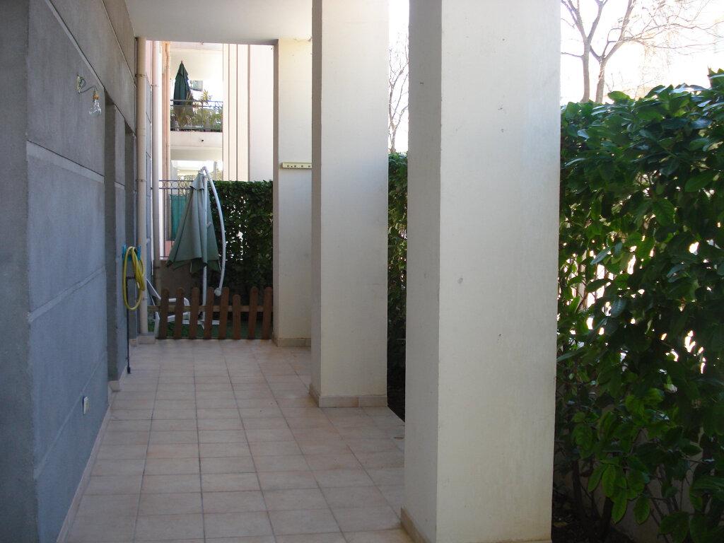 Appartement à louer 2 54.13m2 à Cagnes-sur-Mer vignette-4