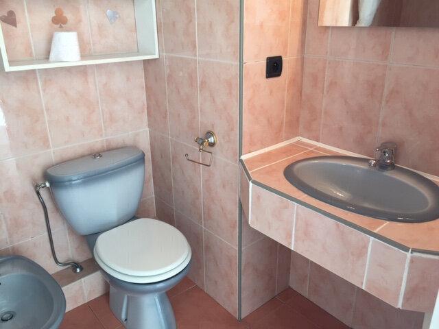 Appartement à louer 1 24.27m2 à Cagnes-sur-Mer vignette-5