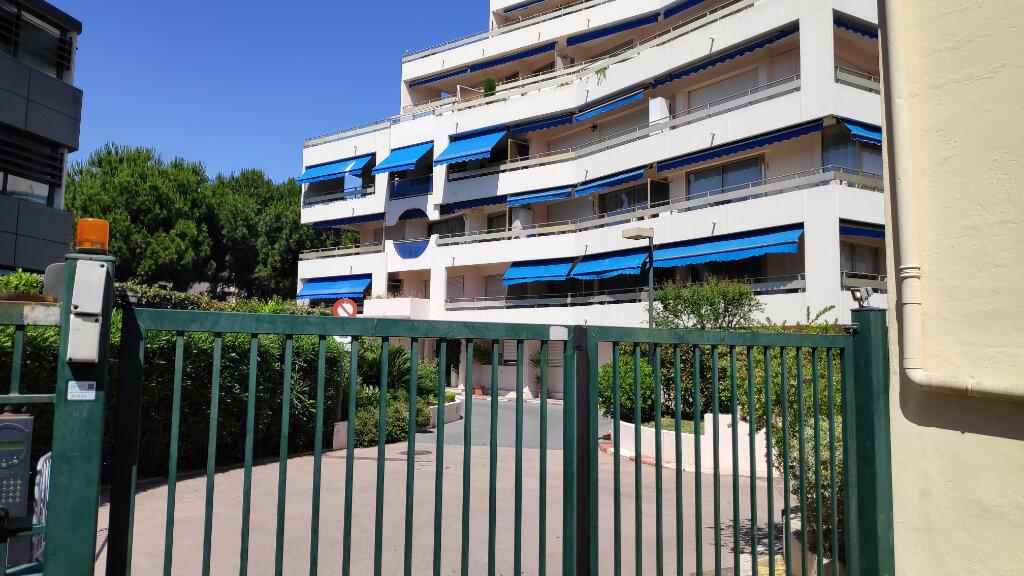 Appartement à louer 1 30m2 à Cagnes-sur-Mer vignette-8