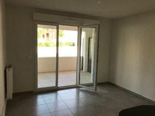 Appartement à louer 2 38m2 à Roquefort-les-Pins vignette-5