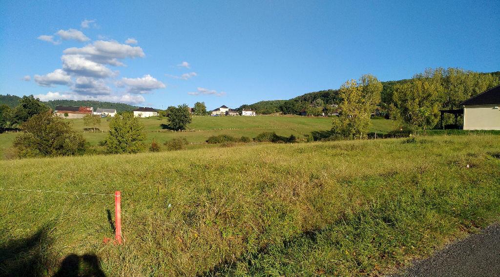 Terrain à vendre 0 1335m2 à Saint-Cernin-de-Larche vignette-1