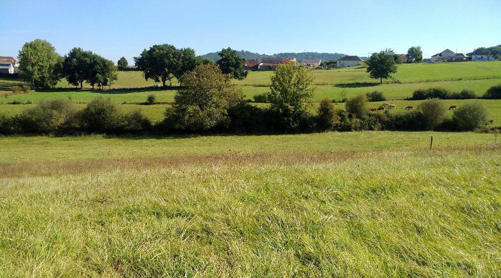 Terrain à vendre 0 1335m2 à Saint-Cernin-de-Larche vignette-2