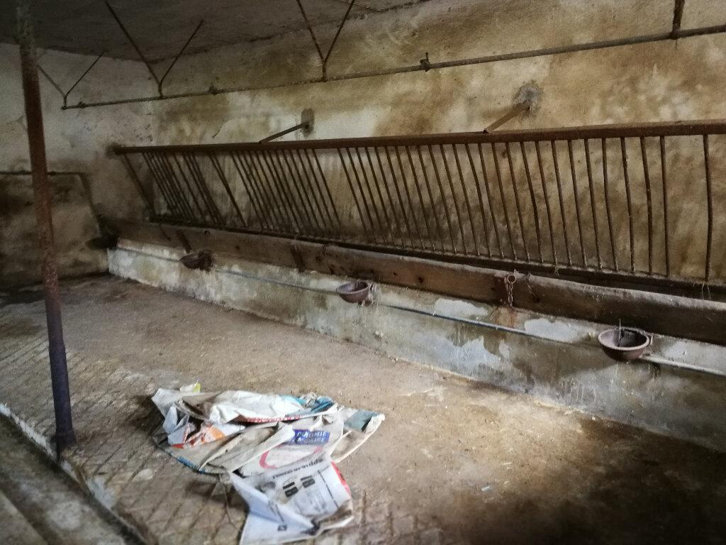 Maison à vendre 6 100m2 à Hautecourt-Romanèche vignette-3