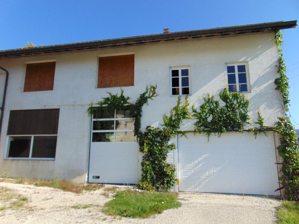 Maison à vendre 7 203m2 à Ruffieu vignette-17