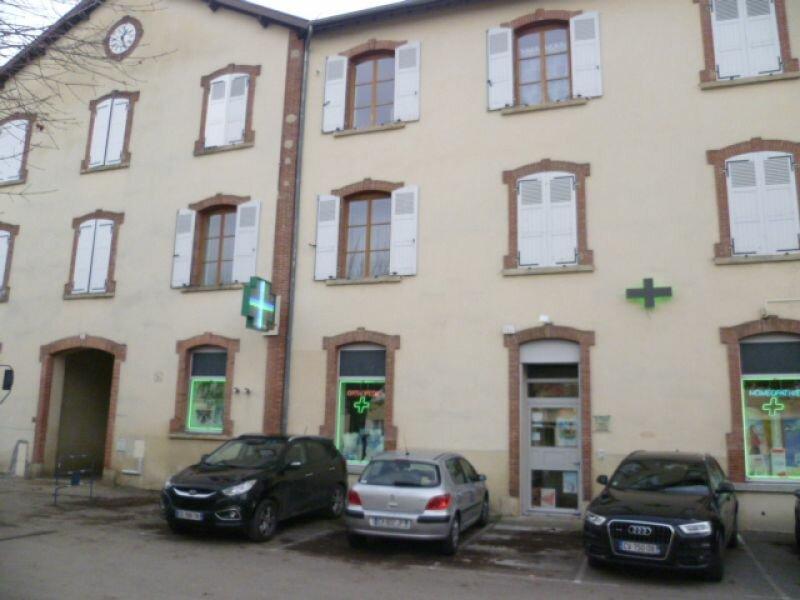 Appartement à louer 1 30.11m2 à Saint-Siméon-de-Bressieux vignette-4