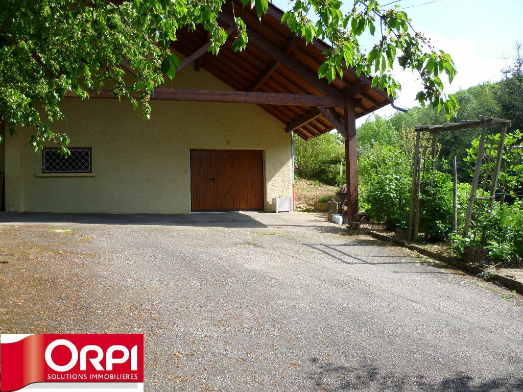 Maison à vendre 6 172m2 à Saint-Geoirs vignette-10