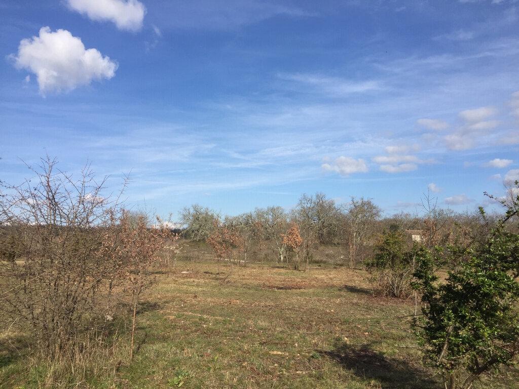 Terrain à vendre 0 1355m2 à Berrias-et-Casteljau vignette-2