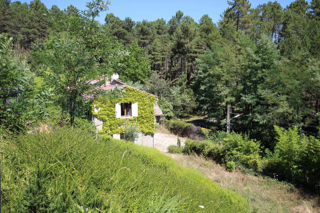 Maison à vendre 8 142m2 à Bordezac vignette-7