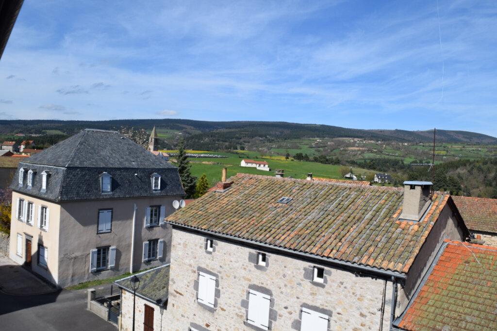 Appartement à vendre 5 104m2 à Ruynes-en-Margeride vignette-1