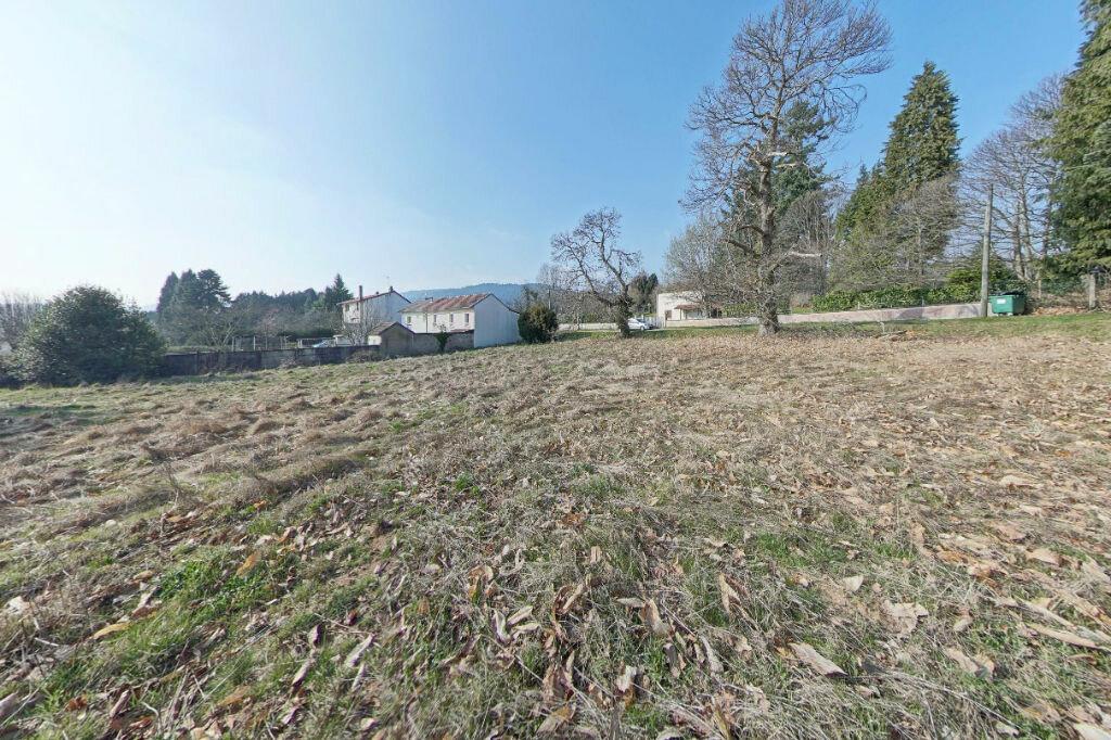 Terrain à vendre 0 2304m2 à La Jonchère-Saint-Maurice vignette-2