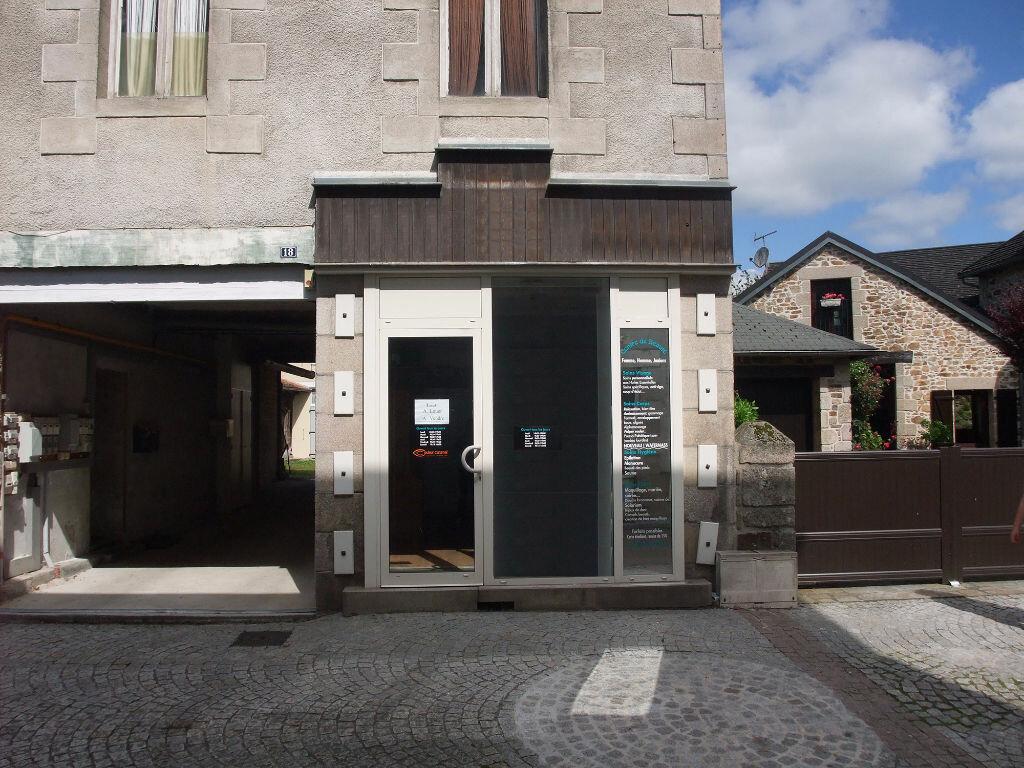 Maison à vendre 6 102m2 à Ambazac vignette-6