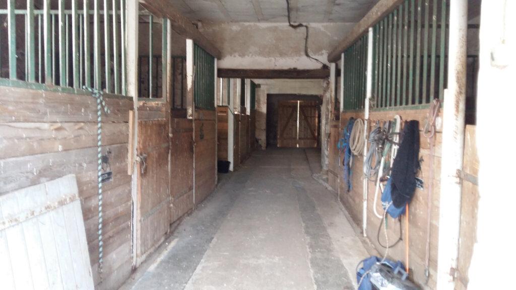 Maison à vendre 6 170m2 à Bussières vignette-13