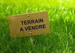 Terrain à vendre 0 2500m2 à Castelnau-d'Estrétefonds vignette-1