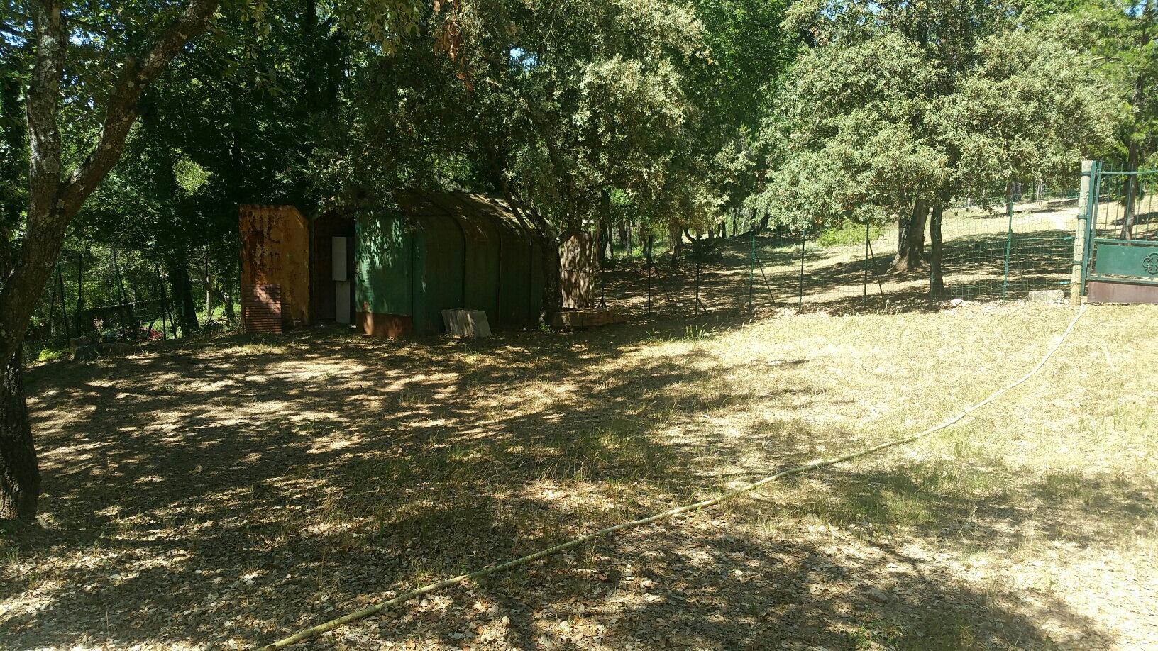 Maison à louer 3 75m2 à Boisset-les-Prévanches vignette-10