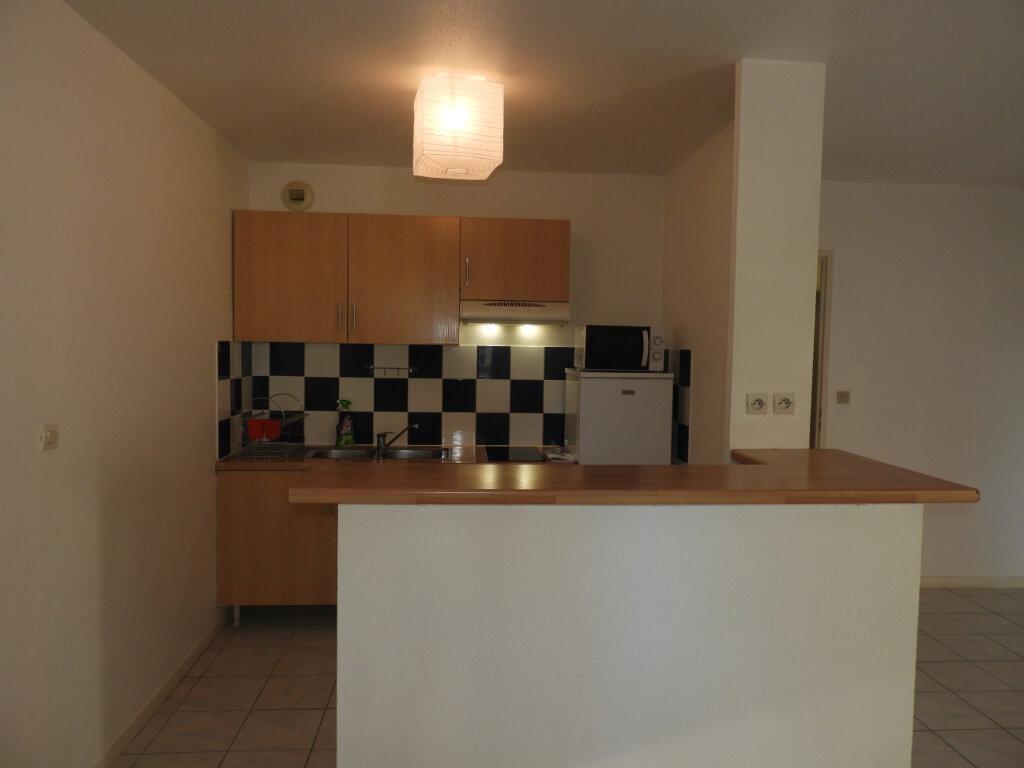 Appartement à louer 3 66.3m2 à Saint-Jean vignette-4