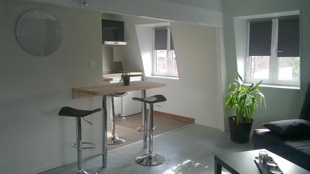 Appartement à louer 2 50m2 à La Madeleine vignette-4