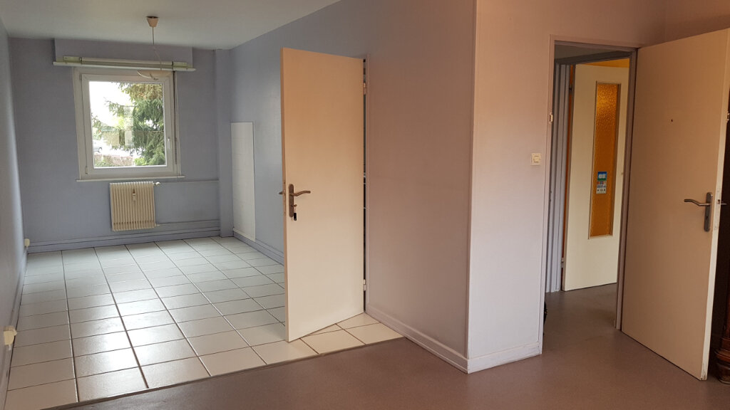 Appartement à vendre 3 64.4m2 à Mulhouse vignette-1
