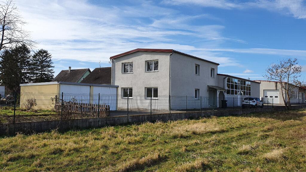 Maison à louer 6 154.75m2 à Réguisheim vignette-1