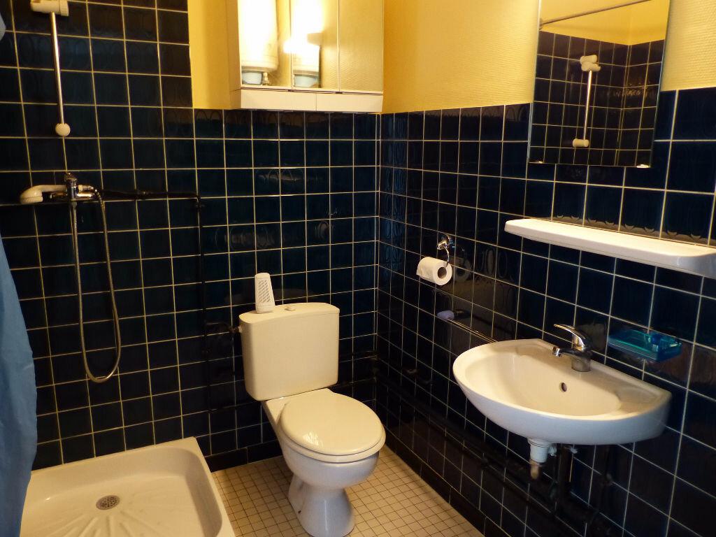 Appartement à louer 1 24.68m2 à Mulhouse vignette-5