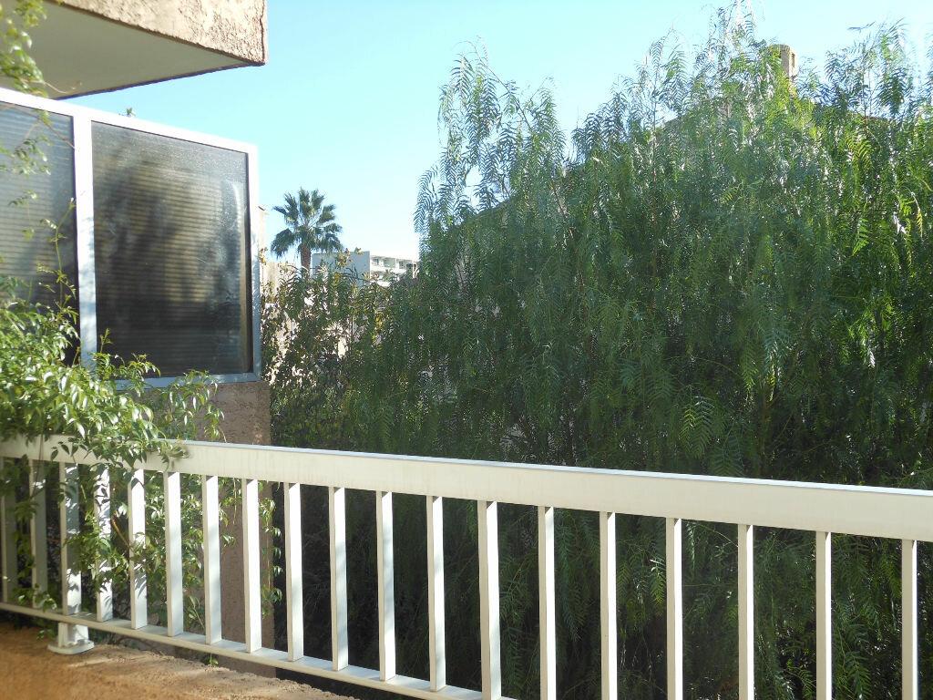 Appartement à louer 2 50m2 à Toulon vignette-4