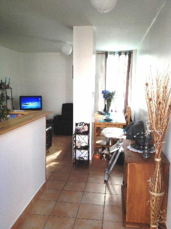 Appartement à louer 2 50m2 à Sisteron vignette-16