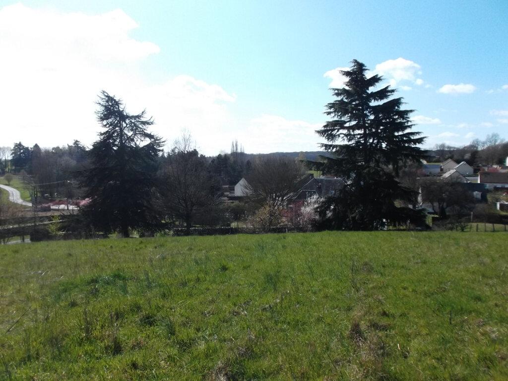 Terrain à vendre 0 4719m2 à Auzouer-en-Touraine vignette-3