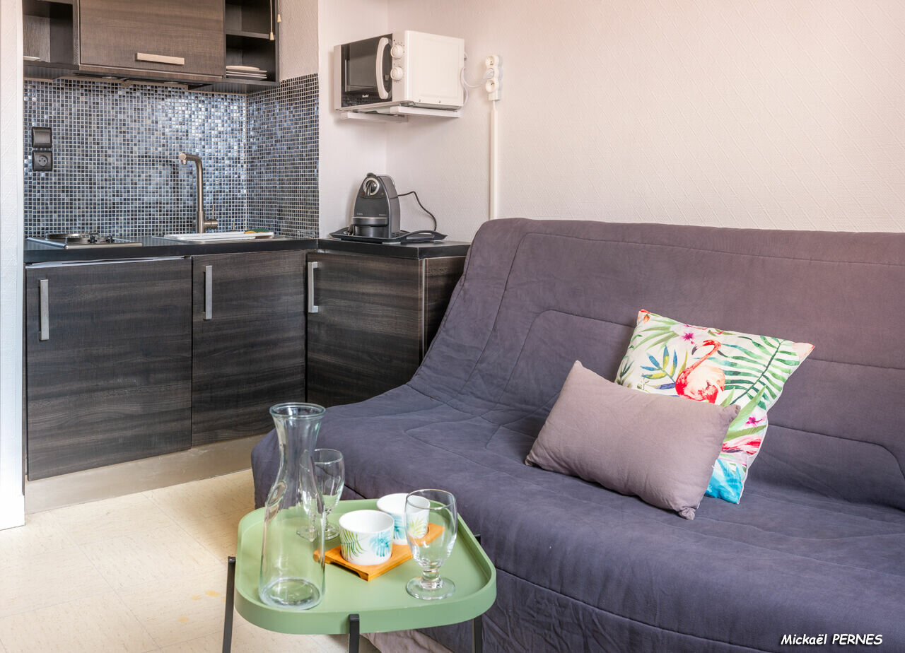 Appartement à louer 1 14.54m2 à Larmor-Plage vignette-2