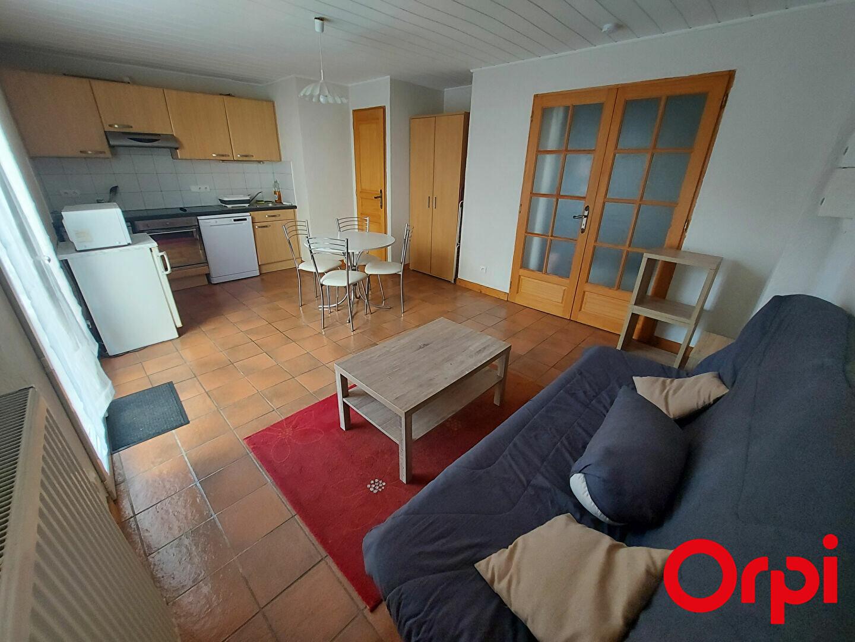 Appartement à louer 1 34m2 à Bons-en-Chablais vignette-1