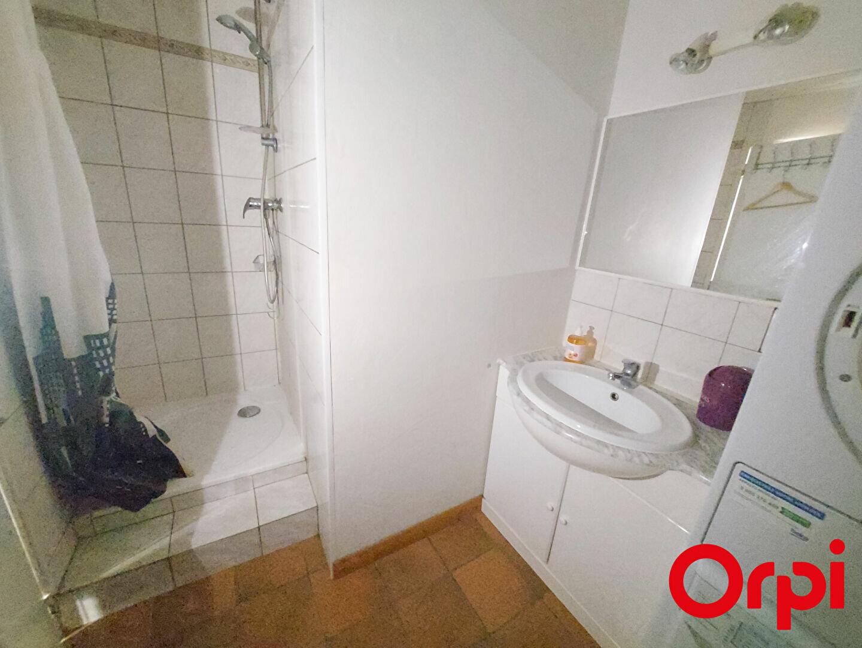 Appartement à louer 1 34m2 à Bons-en-Chablais vignette-4
