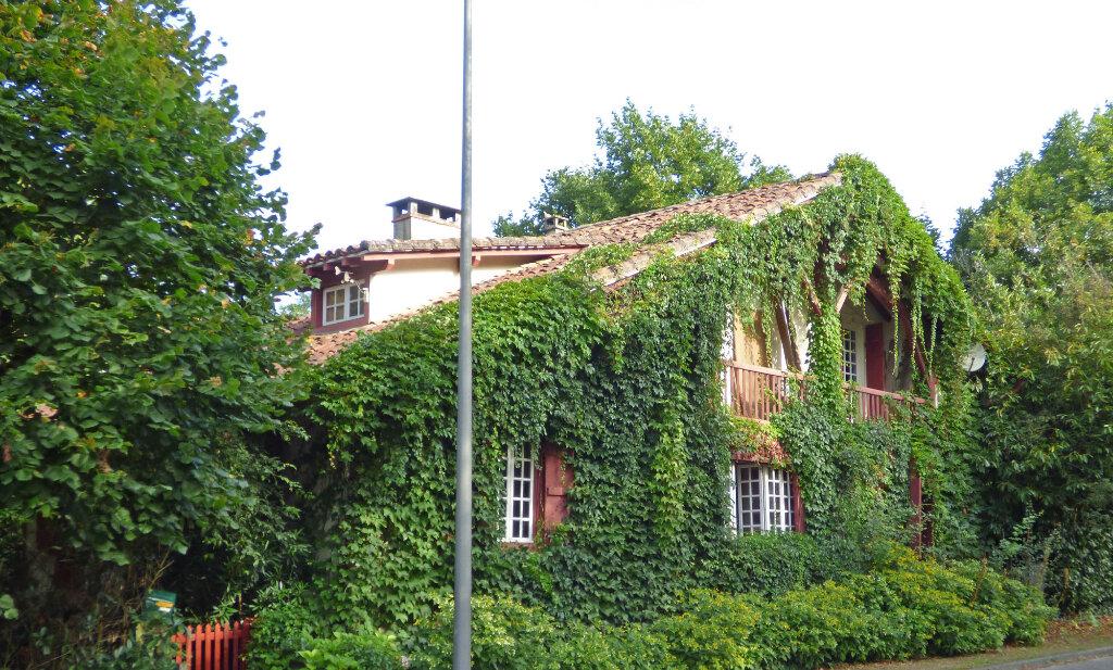 Maison à vendre 5 200m2 à Maurrin vignette-1