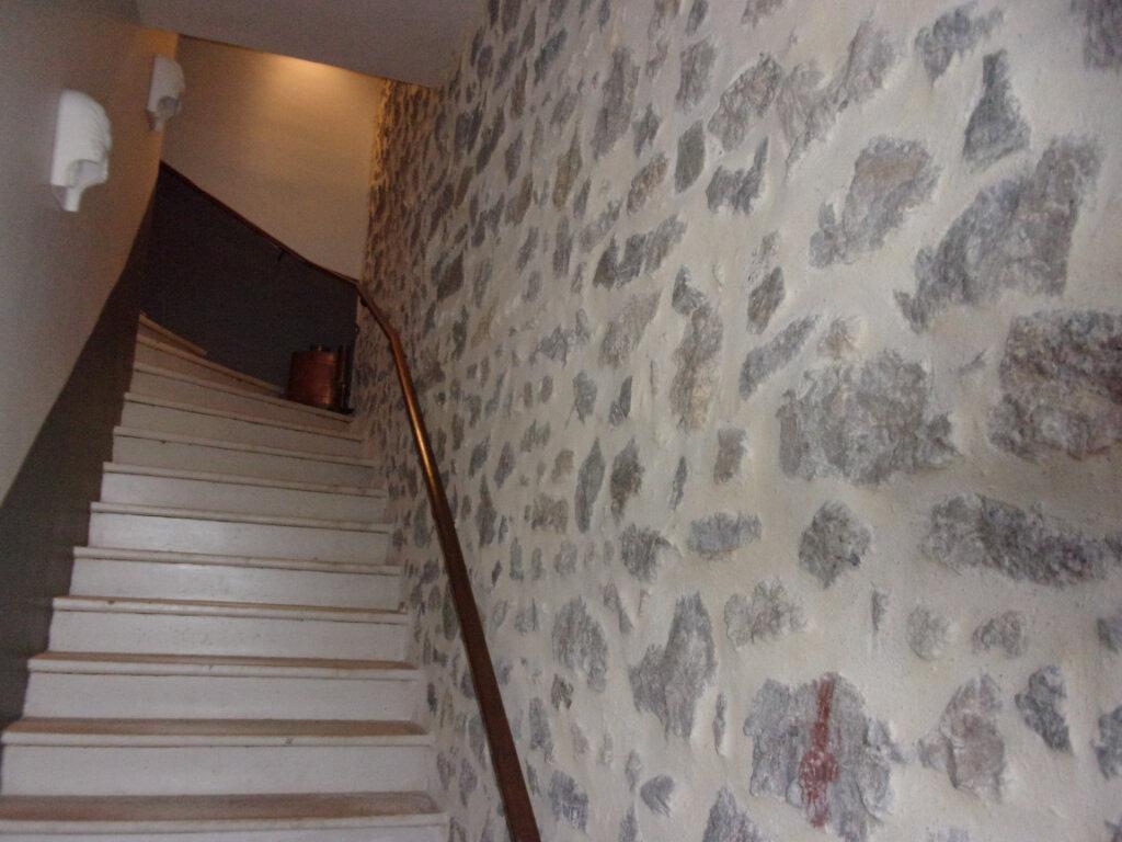 Maison à vendre 6 200m2 à Clermont-l'Hérault vignette-3